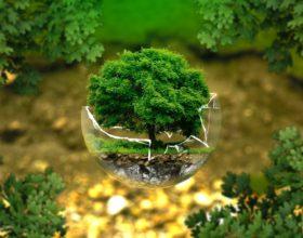 QUALE RELAZIONE TRA L'EFFICIENZA ENERGETICA E LA DIMENSIONE AMBIENTALE DELLA CSR (Corporate Social Responsibility)
