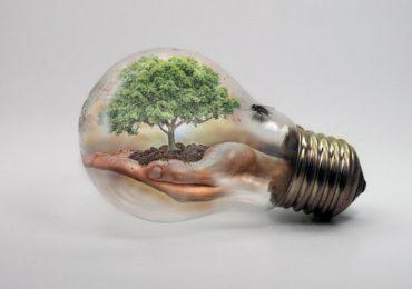 GREEN MANAGEMENT & GREEN ECONOMY